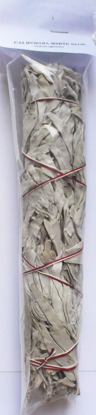 "Calfornia White Sage ""Grandfather Sage"" Smudge Stick (8"" approx. - Large)"